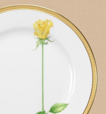 一本の薔薇の花 黄